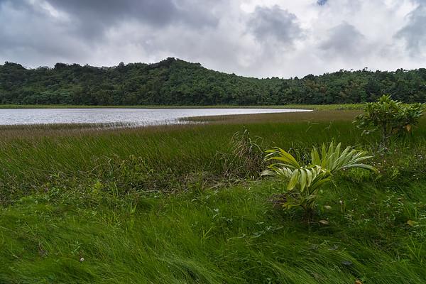 South side of Grand Etang Lake.
