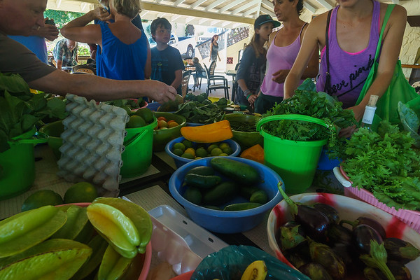 Jenny's Farmer's Market at Secret Harbour...a very impressive spread of fresh produce!