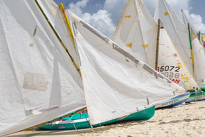Workboats lining Grand Anse Beach at the Grenada Sailing Festival.