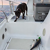 Crewman George not quite sure what to think of the tuna we just caught.