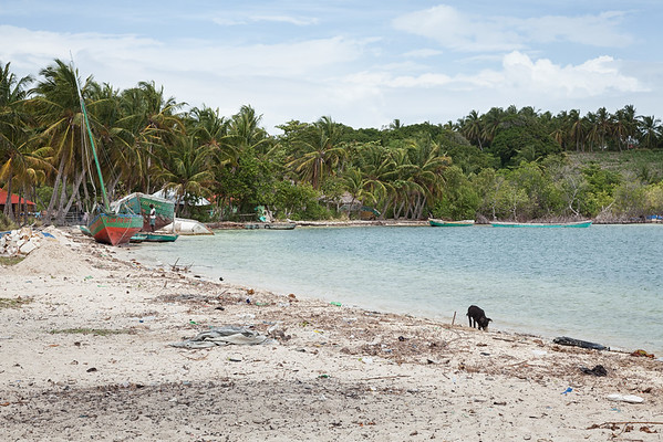 The beach at Soulette village.  The local trade in this village is boatbuilding.  Notice the trash on the beach - it's like this on most of the island.  And a pig is tied to a stake at the water's edge.