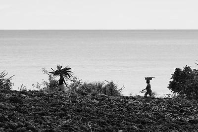 Women balancing loads on their heads walking through La Hatte village, Ile A Vache, Haiti.