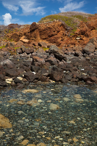 The tide pools on the north side of Culebrita