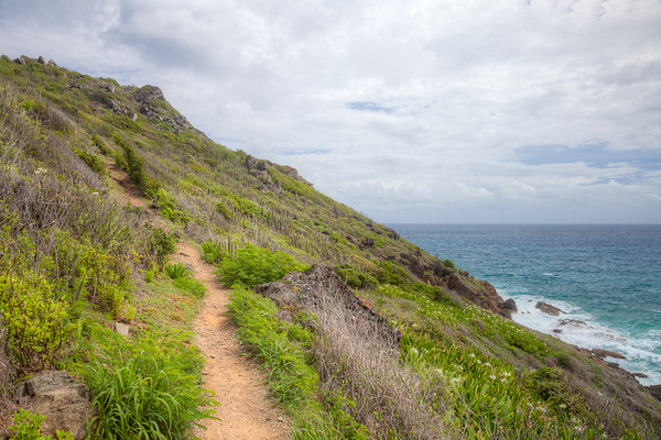 The trail leading to Anse de Columbier