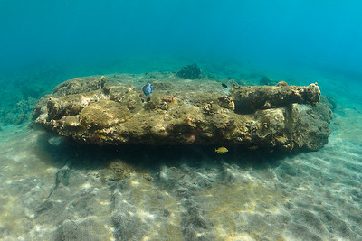 Cannons found a few feet below the surface at Port Oranje