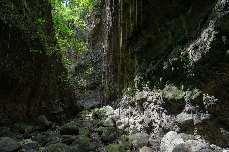 stone fort canyon