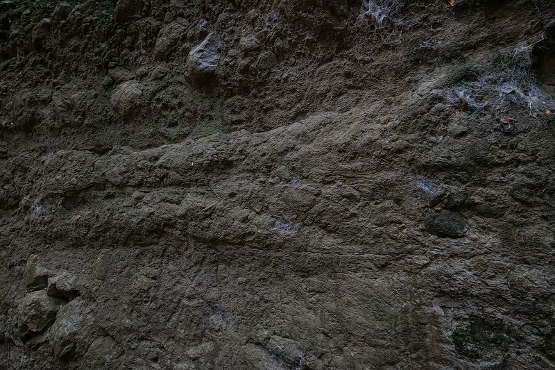This section of the canyon contains probably the highest concentration of petroglyphs.