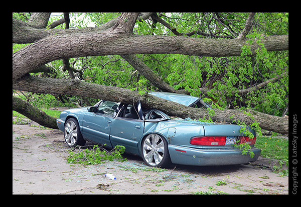 TOR_0698 Crushed Auto