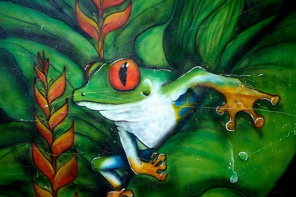 Street art in Tortuguero