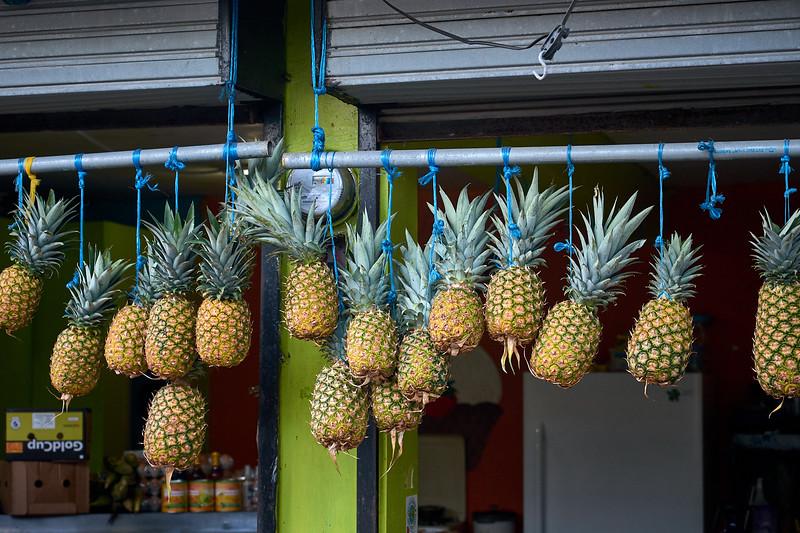 Fresh pineapple in Tortuguero