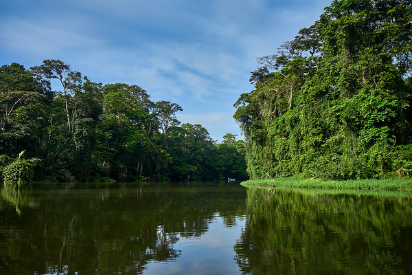 Touring Tortuguero National Park on the Laguna Penitencia