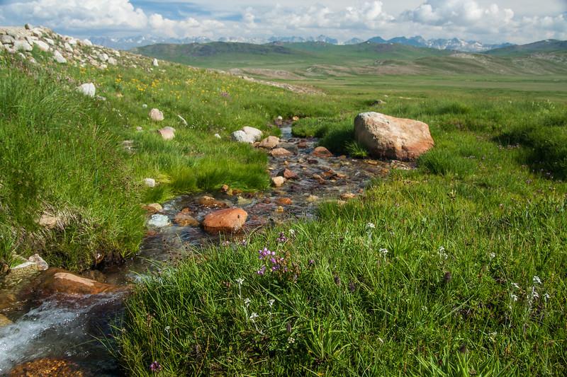 Deosai Plateau, Gilgit Baltistan