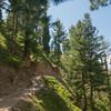 The narrow jeep track up to Lalazar Meadow, Kaghan