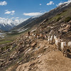 A Bakarwal shepherd traveling with his flock near Noori Top, Kaghan