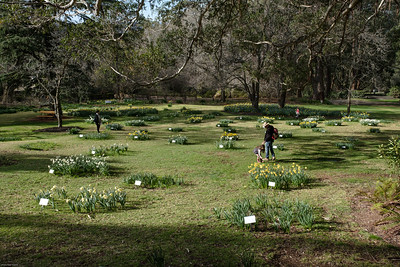 Blue Mountains Botanical Garden