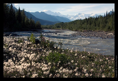170 McCarthy Creek