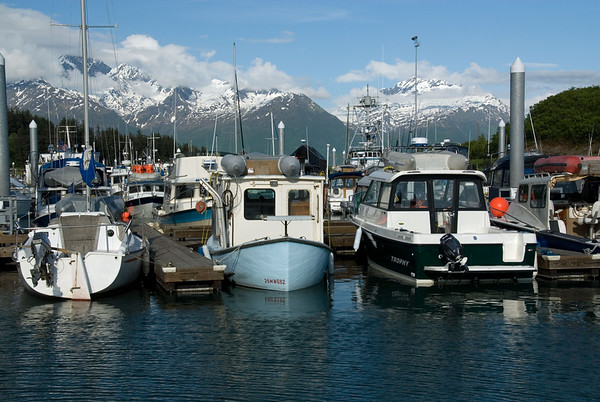 On the docks at the Valdez small boat harbor.