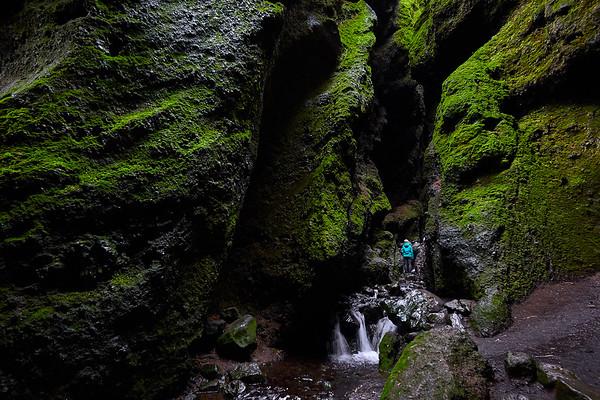 Rauðfeldsgjá Canyon, Iceland