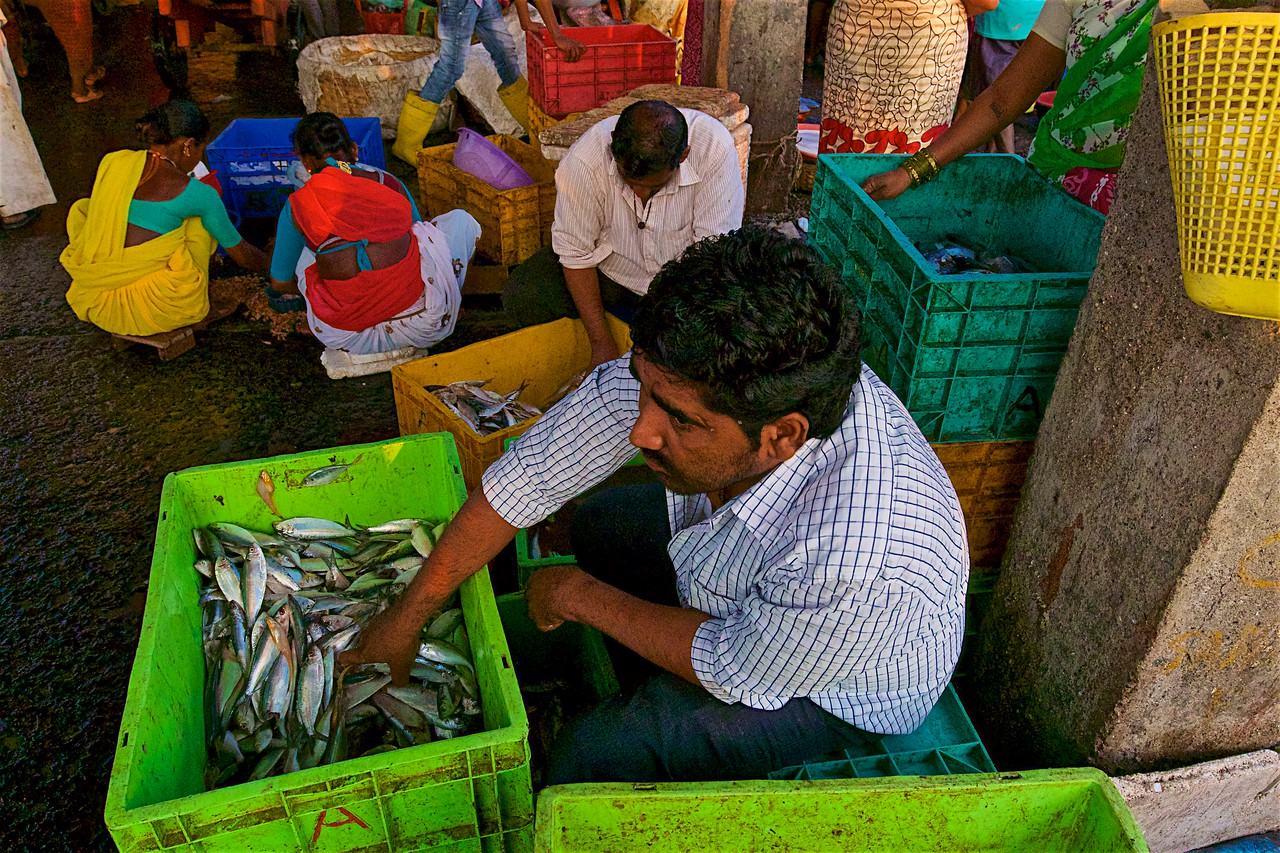 Baskets full of fish