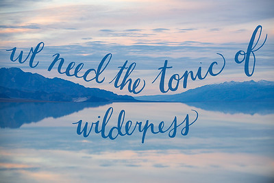 The Tonic of Wilderness