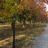 F-9 Park, Islamabad