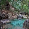A perennial pond in the Margalla Hills