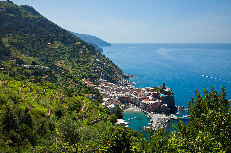 Looking down on Vernazza from the olive orchards high on the bluffs.  These terraces were carved into the hillside 900 years ago, and are specifically cited by UNESCO, highlighting man's ability to alter the landscape for survival.