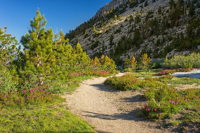 Silver Pass Trail