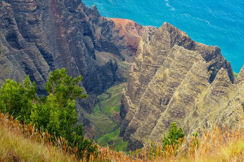 The Awa'awapuhi Valley