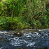 Along the hiking trail to Uluwehi Falls