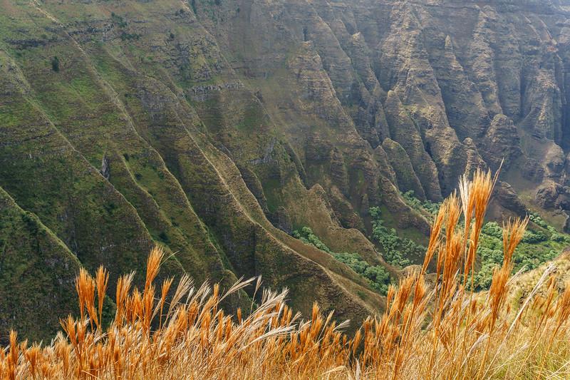 nualolo valley