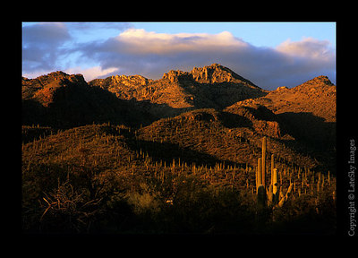 S03 Sabino Canyon B
