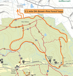5.1 Mile Loop from Lewisboro Town Park including some of the Leatherman's Loop trails in Deer Hollow (DH),Brown, and Pine Forest trails.