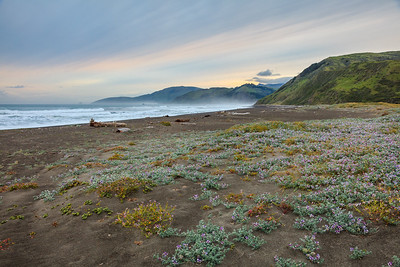 Early morning at Mattole Beach before starting the Lost Coast Trail.