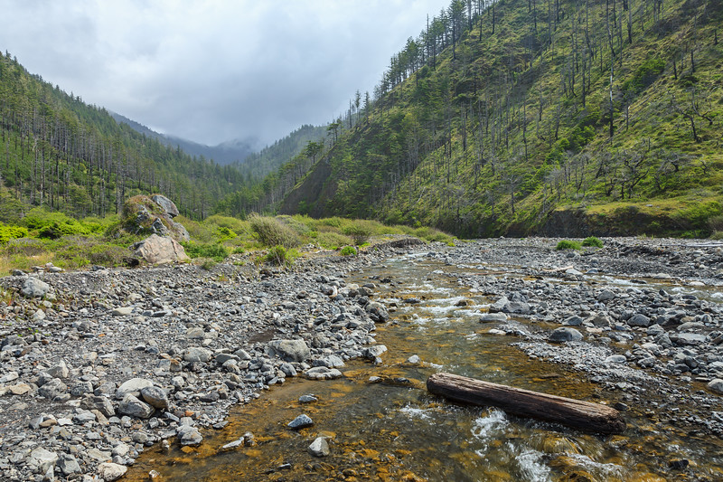 One of the stream crossings along the Lost Coast Trail.