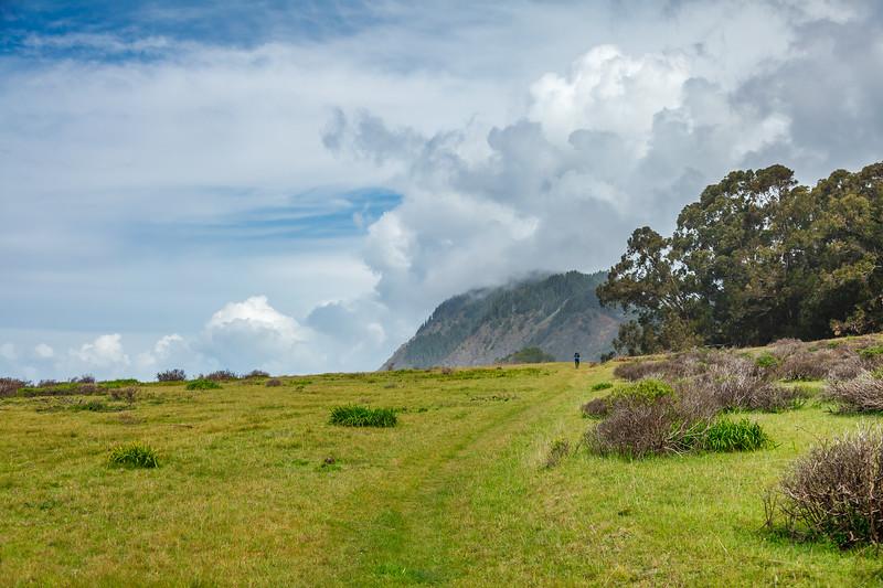 The trail near Jones Beach.