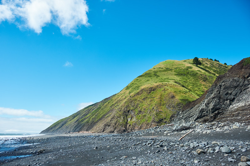 Diversity of landscape on the Lost Coast Trail, near Cooskie Creek
