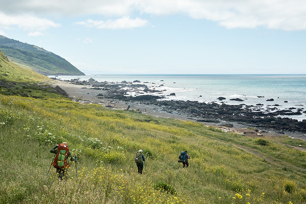 Continuing south on the Lost Coast Trail from the Punta Gorda Lighthouse