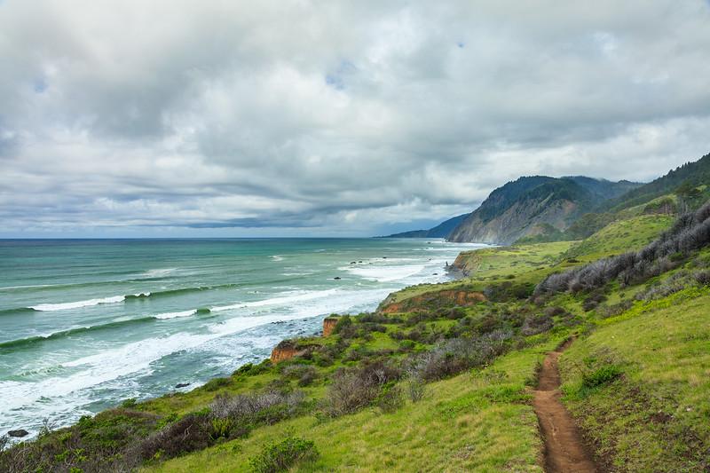 The trail to Jones Beach from Needle Rock, Sinkyone Wilderness.