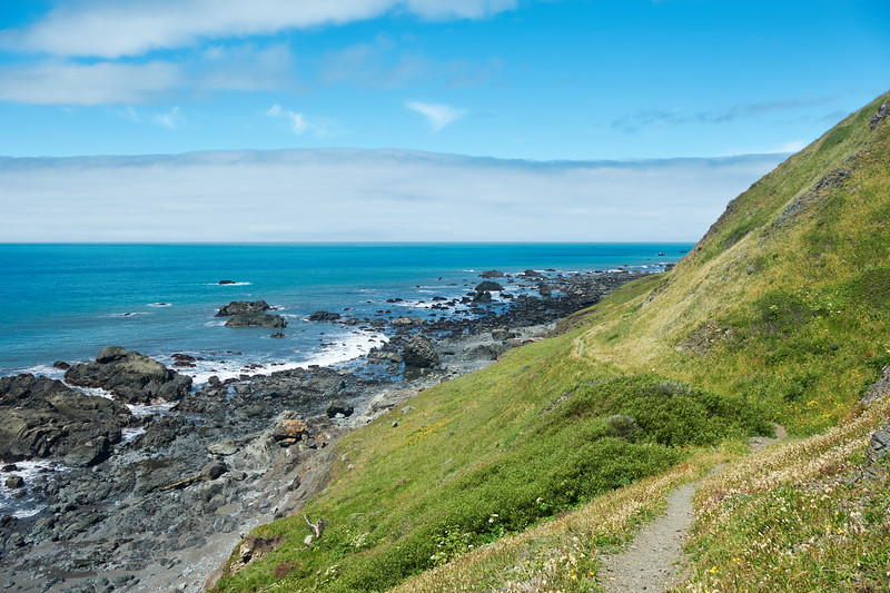 The Lost Coast Trail can be continued on the ocean or the bluffs above near Sea Lion Gulch
