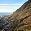 Lost Coast Bluffs