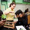 Palavra's Photosynthesis Lab-20