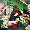 Palavra's Photosynthesis Lab-17