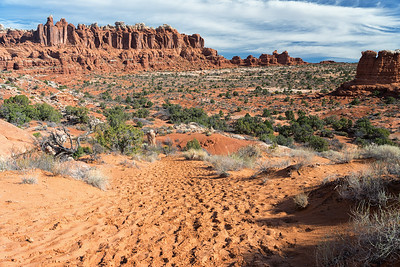 Deep sand on the trail to Tower Arch, Arches National Park.