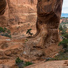 The trail from Tapestry Arch to Sand Dune Arch, Arches National Park