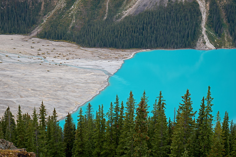 Where the glaciers have receded and are now feeding into Peyto Lake, Banff National Park