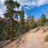 Queens Garden Trail, Bryce Canyon National Park