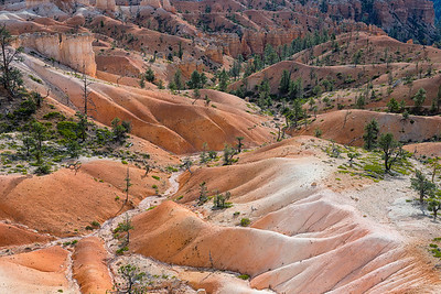 From the Queens Garden Trail, Bryce Canyon National Park