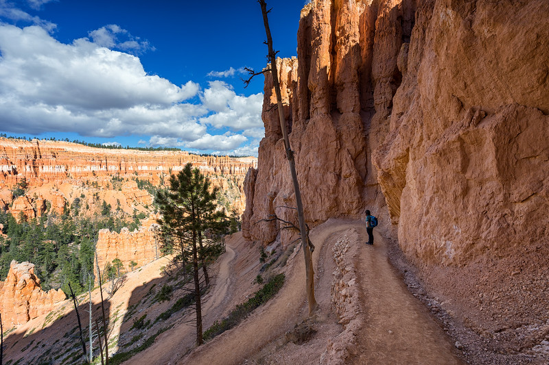 Switchbacks on the Peekaboo Loop Trail, Bryce Canyon National Park