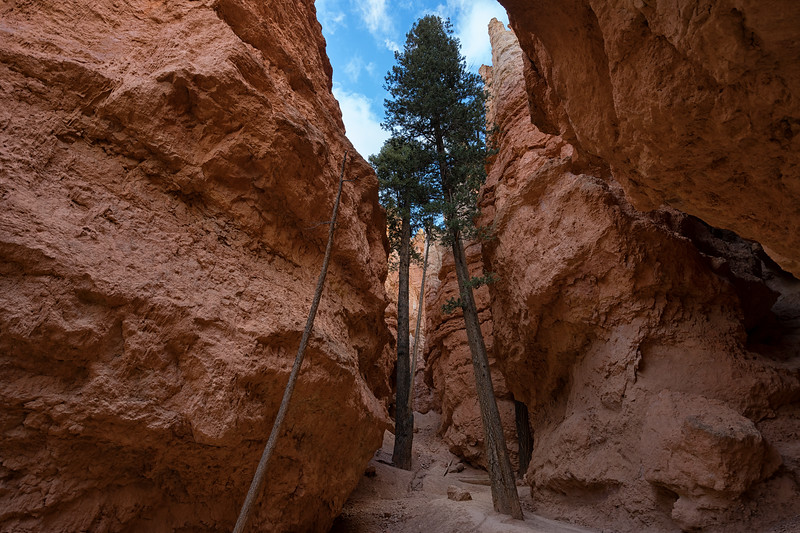 Navajo Loop Trail, Bryce Canyon National Park